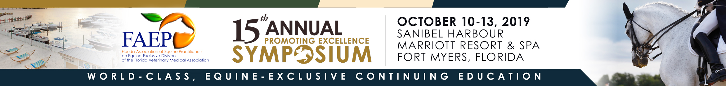 15th Annual FAEP Promoting Excellence Symposium 2019 Main banner